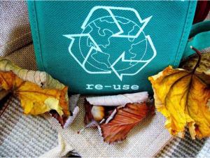 Как се рециклират пестициди, хербициди, инсектициди и изкуствени торове и какви е влиянието им върху околната среда
