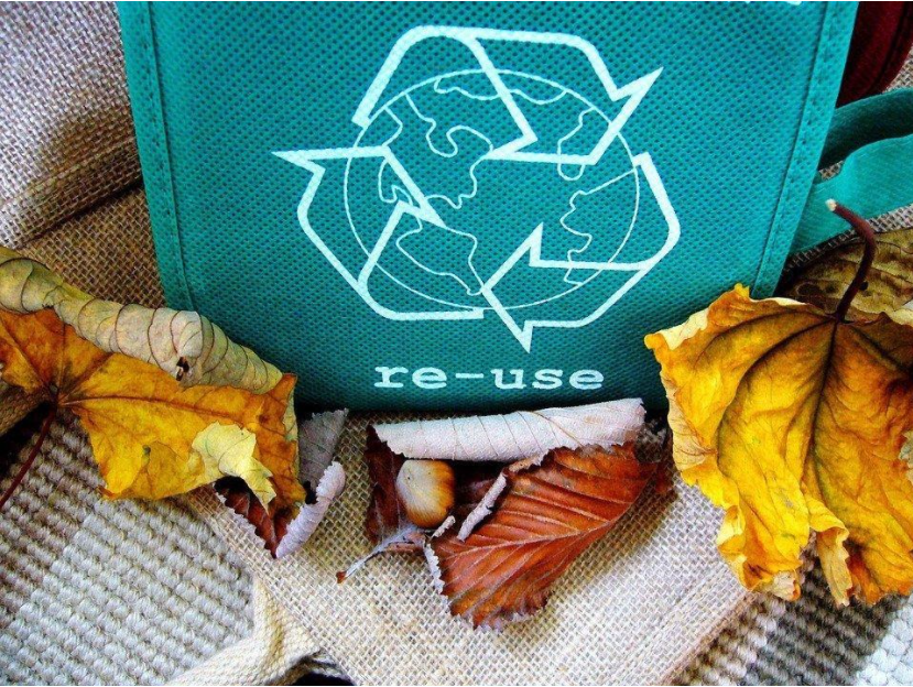 How to recycle pesticides, herbicides, insecticides and fertilizers and their impact on the environment